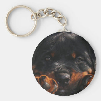 Paws For Thought Key Ring