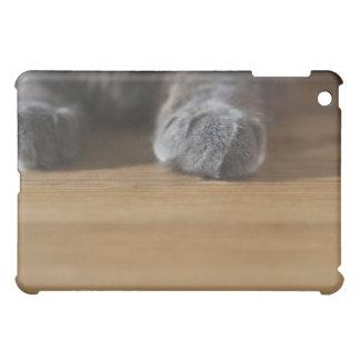 Paws of cat iPad mini cases