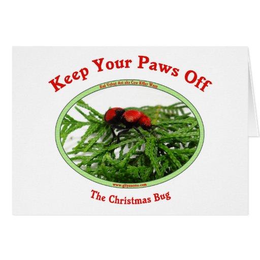 Paws Off Christmas Bug Cards