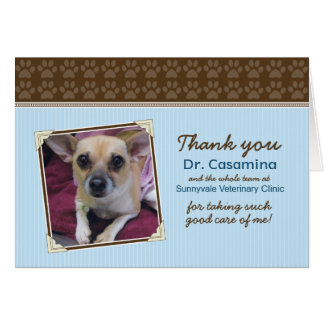 Paws Thank You Card for the Vet (baby blue/brown)