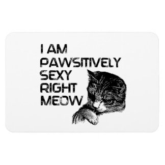 Pawsitively Se xy Right Meow Rectangular Magnet