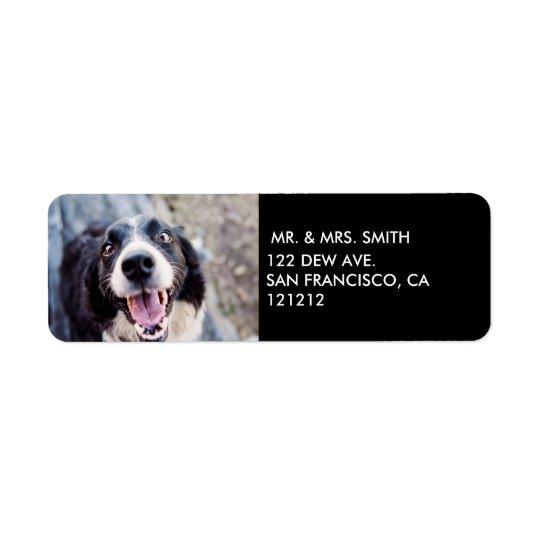 Pawsome Howlidays | Dog Photo Return Address
