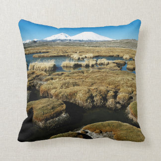 Payachalas Volcanos Cushion