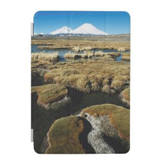 Payachalas Volcanos iPad Mini Cover