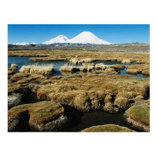 Payachalas Volcanos Postcard