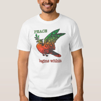 Peace Begins Within t-shirt