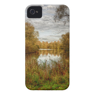 Peace By the Lake Blackberry Bold Case