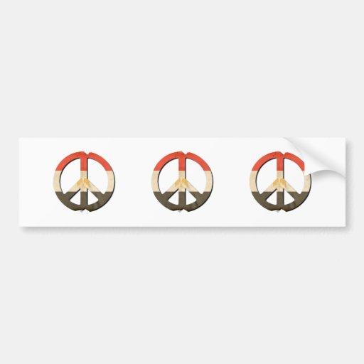 Peace in Egypt Bumper Sticker