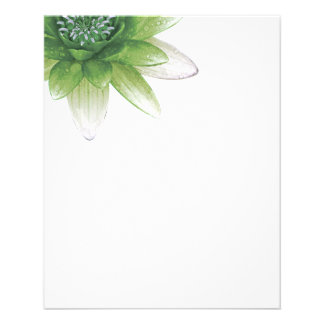 Peace l Beautiful Green Lotus Flower/Water Lily 11.5 Cm X 14 Cm Flyer