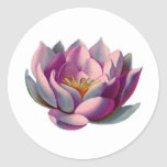 Peace l Beautiful Pink Lotus Flower/Water Lily Round Sticker