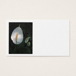 Peace Lily Business Card