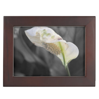 Peace Lily - Selective Color Keepsake Box