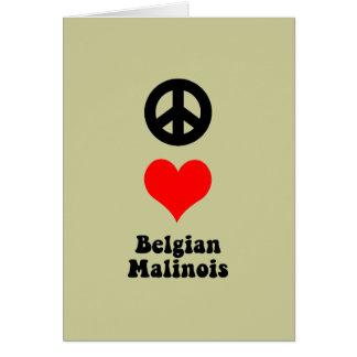Peace love Belgian Malinois Cards
