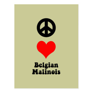 Peace love Belgian Malinois Post Cards