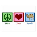 Peace Love Camels Postcards