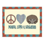 Peace Love Echidnas Post Cards