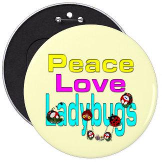 Peace Love Ladybug Pin