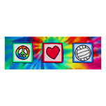 Peace, Love, Volleyball Poster