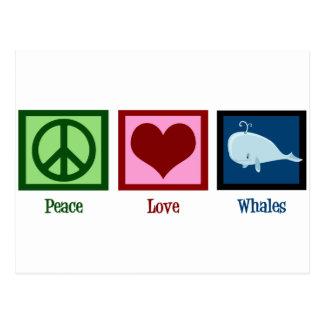 Peace Love Whales Postcard