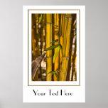 Peaceful Bamboo Jungle Poster