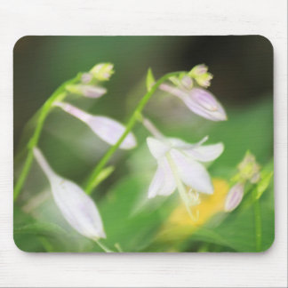 Peaceful Blooming Mouse Pad