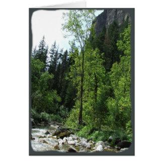 Peaceful Forest Sympathy Card