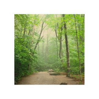 Peaceful Hike Wood Wall Decor