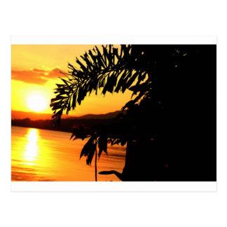 Peaceful Morning Sun Postcard