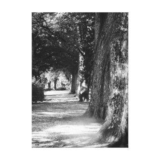Peaceful Path canvas