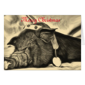 Peaceful Pig Christmas card