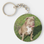 Peaceful Pitbull Basic Round Button Key Ring