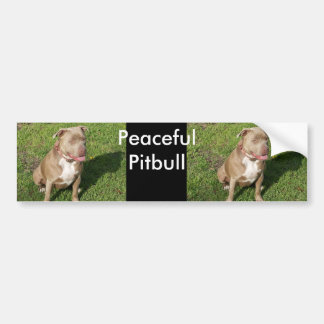 Peaceful Pitbull Bumper Sticker