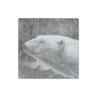 Peaceful Polar Bear Stone Magnet