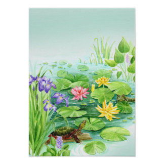 Peaceful Pond Poster