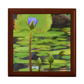 Peaceful Pond- Water Lily Gift Box