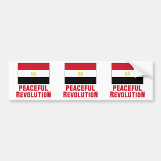 Peaceful Revolution Car Bumper Sticker