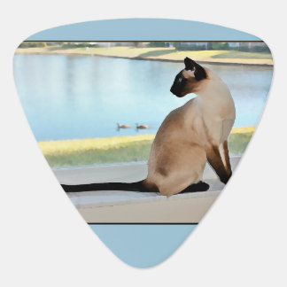 Peaceful Siamese Cat Painting Guitar Pick