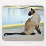 Peaceful Siamese Cat Painting Mouse Pad