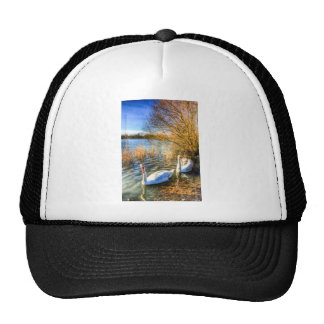 Peaceful Swans Cap