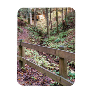 Peaceful Walking Trail Nature Path Magnet