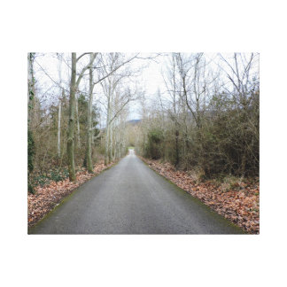 Peacefull road canvas print
