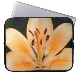 Peach Asiatic Lily Closeup Laptop Case Laptop Sleeve