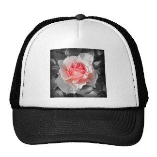 Peach Bliss Rose Trucker Hats