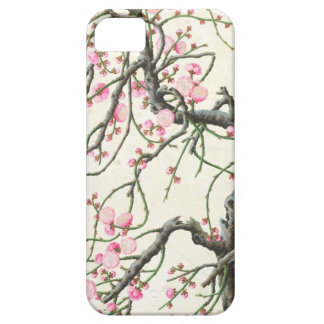 Peach blossom (colour on paper) iPhone 5 case