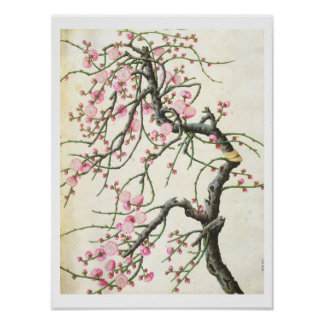 Peach blossom (colour on paper) poster