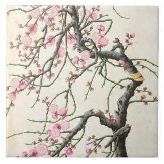 Peach blossom (colour on paper) tile