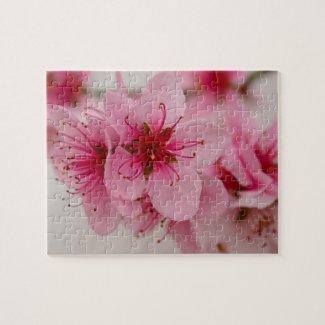 Peach Blossom Floral Jigsaw Puzzle