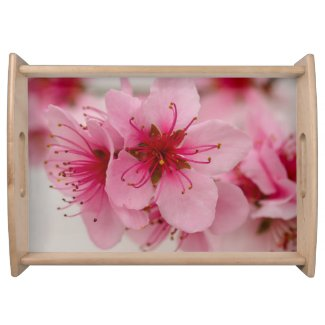 Peach Blossom Floral Serving Tray