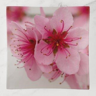 Peach Blossom Floral Trinket Tray