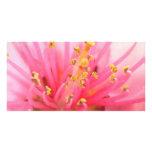 Peach Blossom Macro Custom Photo Card